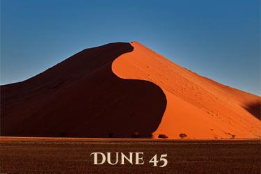 Duin 45