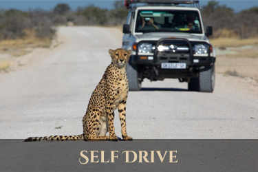 Self drive Namibie