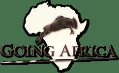 namibiesafari.com